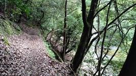 清滝川沿いにハイキング